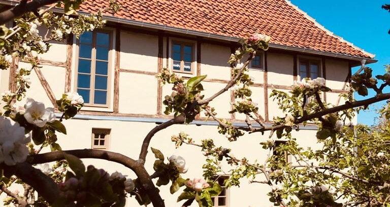 Ferienhaus Gänsetrappe in Ballenstedt Außenansicht